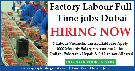 Factory Labour Full Time jobs Dubai