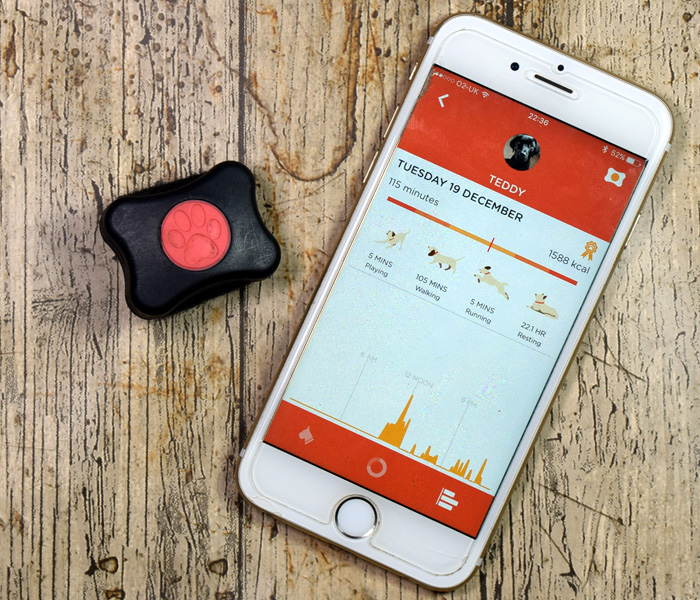 PitPat Fitness Tracker for Dogs