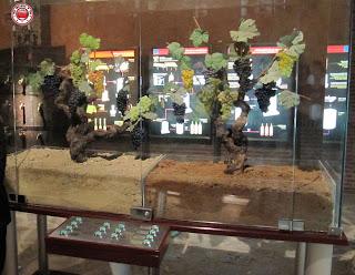 Museo de Villa Lucía en Laguardia