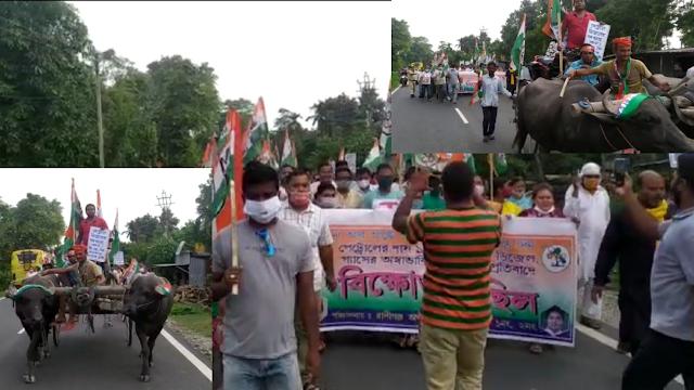 पेट्रोलियम पदार्थो के मूल्यवृद्धि के खिलाप खोरीबाड़ी प्रखंड अन्तर्गत तृणमूल कांग्रेस द्वारा विरोध रैली का आयोजन।