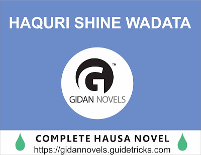 HAQURI SHINE WADATA COMPLETE HAUSA NOVEL