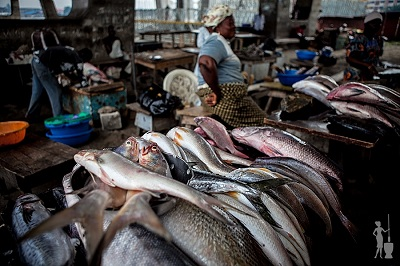 Economic Recession: Price of Fish Skyrockets in the Local Markets...See Current Price