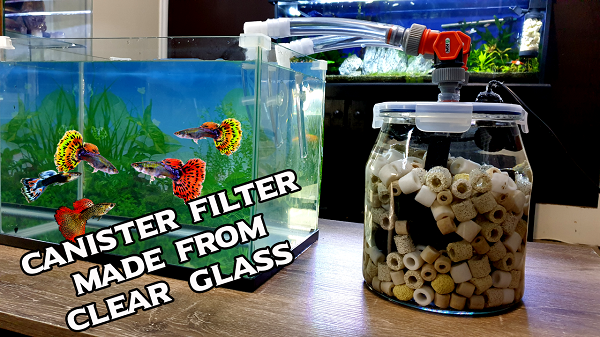 Make a DIY Canister Filter From Glass Jar for Aquarium