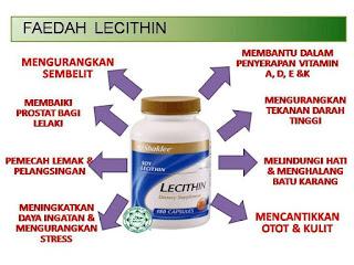 Lecithin; pecah lemak; mengurangkan kolestrol; kekal slim di raya