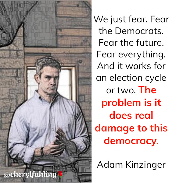 We just fear. Fear the Democrats. Fear the future. Fear everything. And it works for an election cycle or two. The problem is it does real damage to this democracy. — Republican Rep. Adam Kinzinger