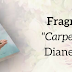 "FRAGMENT ""CARPE DIEM"" - PROLOG"