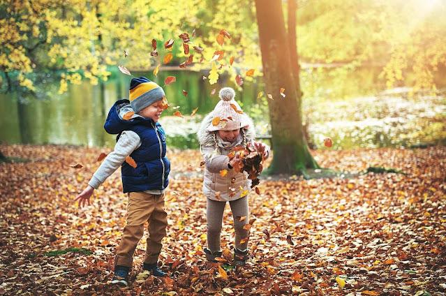 تعلم مصطلحات باللغة الهولندية تتعلق بفصل الخريف