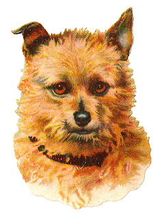 dog vintage terrier image clipart digital illustration art