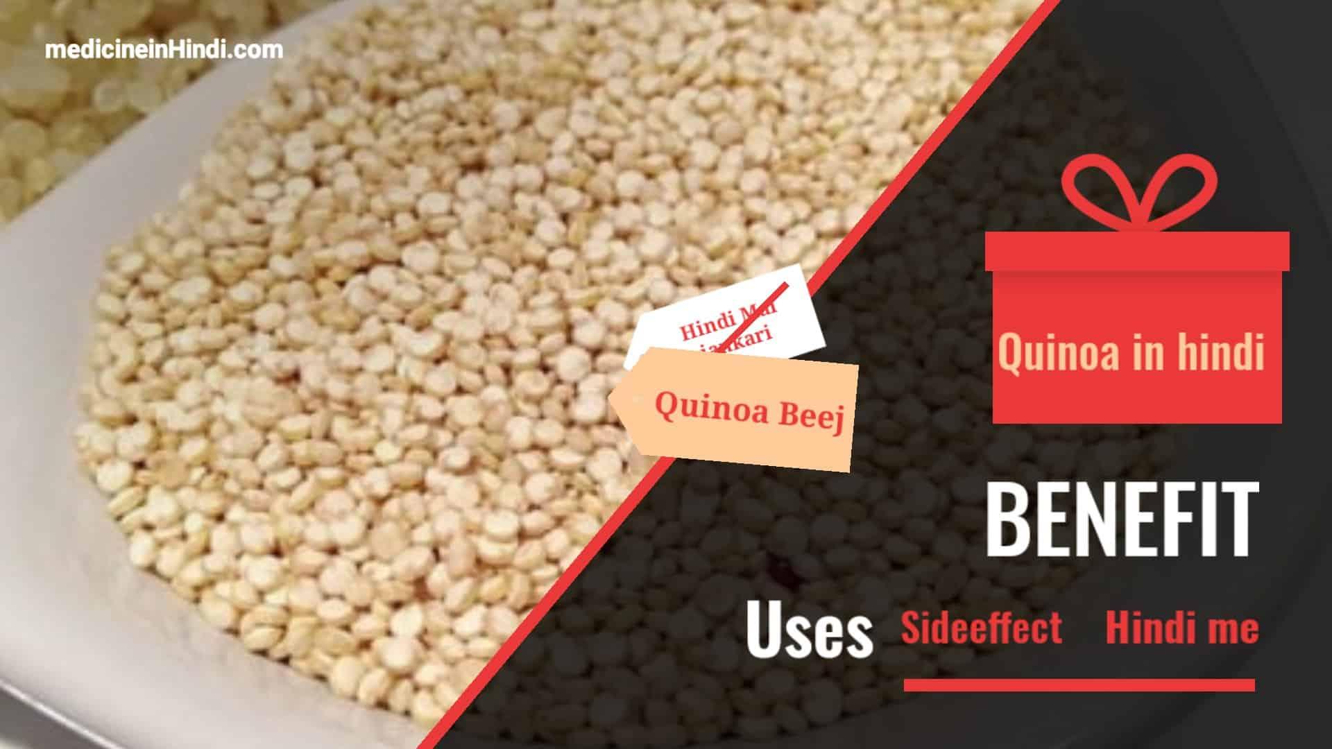 Quinoa in hindi jankari