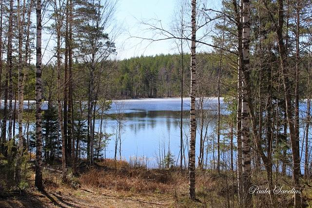 Tallijärvi Ylämaalla