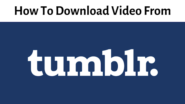 How do I download Tumblr videos online Free