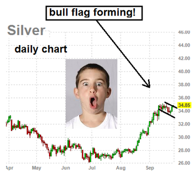silver predictions 2013
