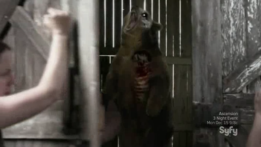 Orso Zombie