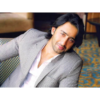 Kuch Rang Pyaar Ke Aise Bhi will be reunited with Shaheer Shaikh co-star Erica Fernandes