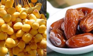 rahasia buah buah Kurma basah dan kering untuk kesehatan