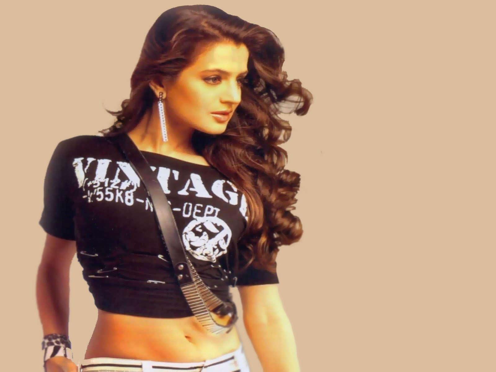 Amisha Patel Hot Pics  Amisha Patel September 2011-8862