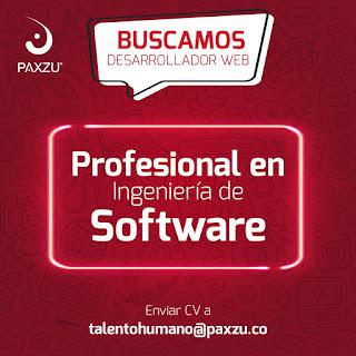 Oferta de Trabajo en Bogota como Profesional en Ingenieria de Software