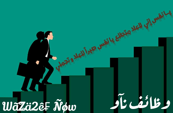 وظائف خاليه للمحاسبين في أرجاء الوطن العربي | وظائف ناو