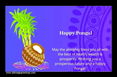 happy Pongal images 2021