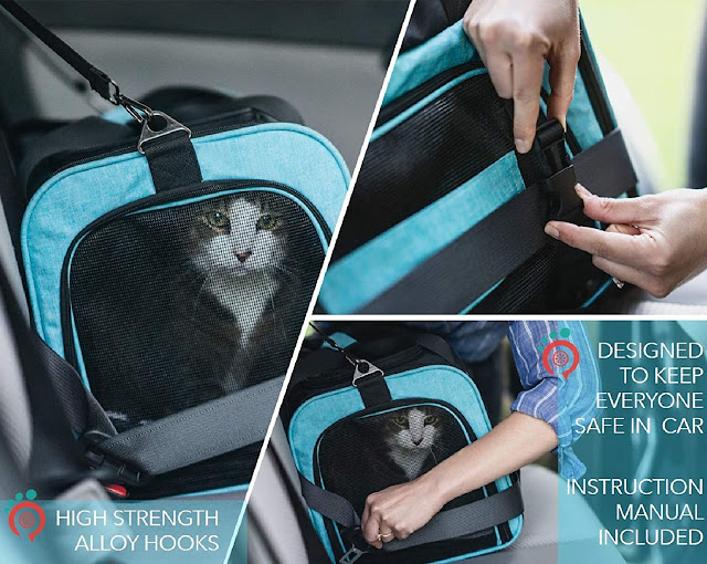 Safety in vehicles of the Lil-Paws pet carrier