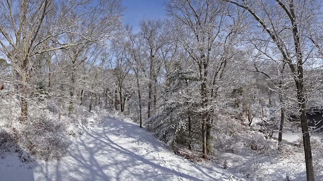 Image Result For Snowy Winter