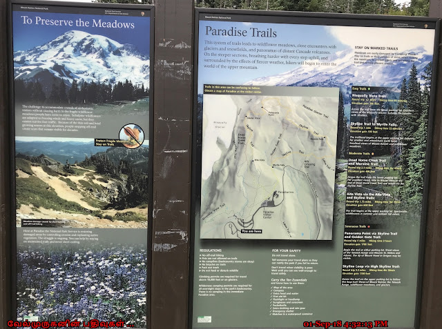 Mount Rainier Paradise Trails