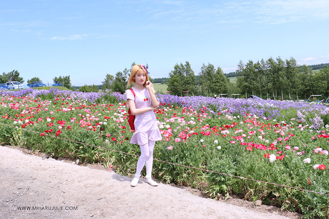Destinasi Wisata Favorit Di Hokkaido