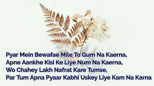 Best Bewafa Shayari in Hindi - Urdu And Hindi Shayari nanhe