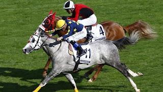 at yarışı, at yarışları, atlar, binicilik federasyonu, binicilik tarihçesi, binicilik terimleri, cirit oyunu, hipodromlar, ilk türk binicileri, jokey kulübü, türk binicilik tarihi, veliefendi,