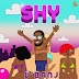 D'Banj - SHY [2019 DOWNLOAD]
