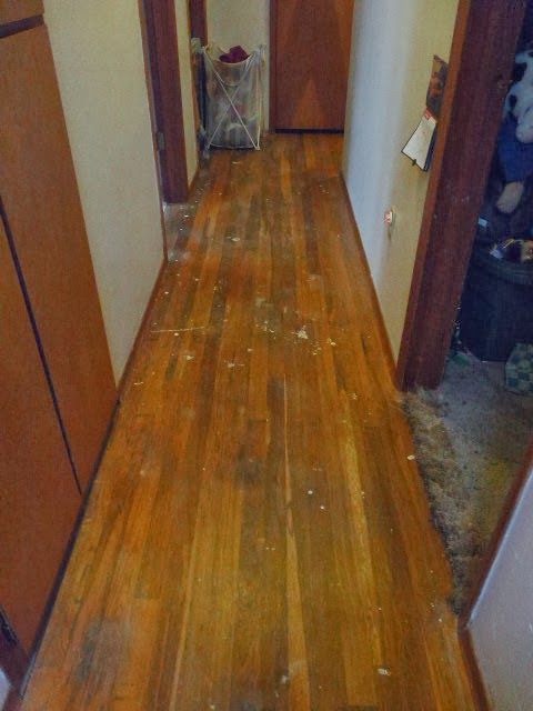 Women Can Fix It How To Clean Old Hardwood Floors