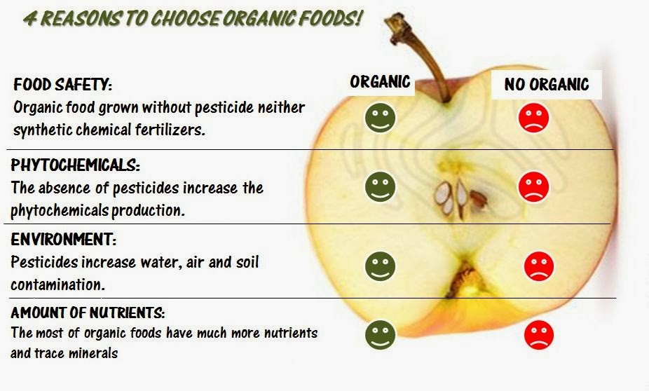 Dietkart Blog: Organic India's Best Selling Products