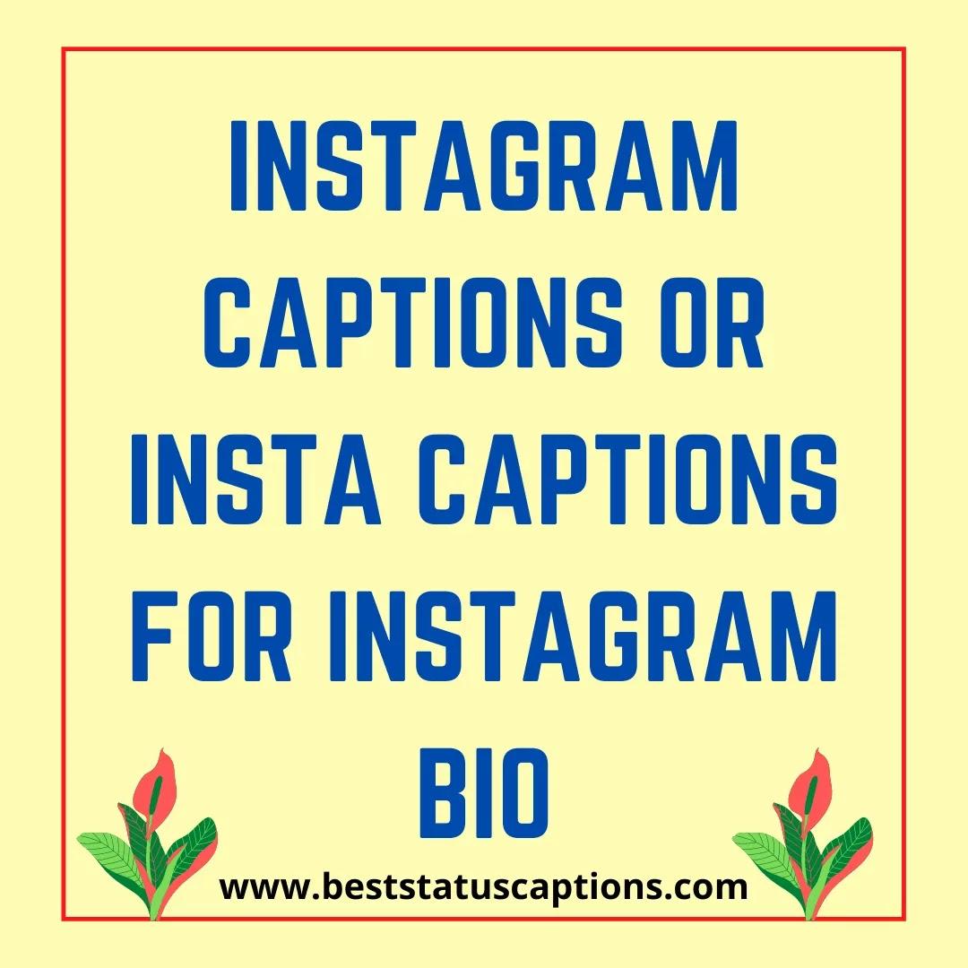 Instagram captions or Insta captions for Instagram Bio-Best Status Captions
