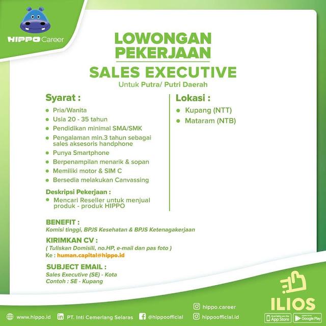 Lowongan Kerja Sales Executive di HIPPO (PT Inti Cemerlang Selaras)