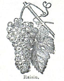 raisin * Weintraube