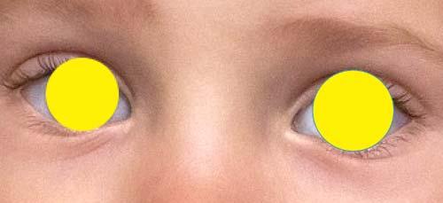 Cara membuat seleksi mata melingkar menggunakan Ellipse Tool
