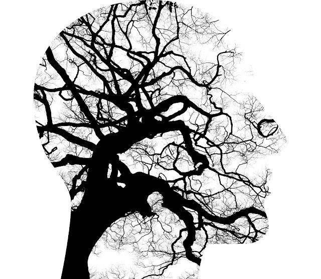 Qual o preço de uma avaliação neuropsicológica?