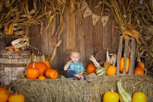 Trumans Fall Pictures 2014