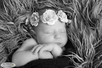 Top Marietta / Atlanta GA Newborn Baby / Infant Portrait / Child / Maternity / Family / High School Senior / Event Photographer