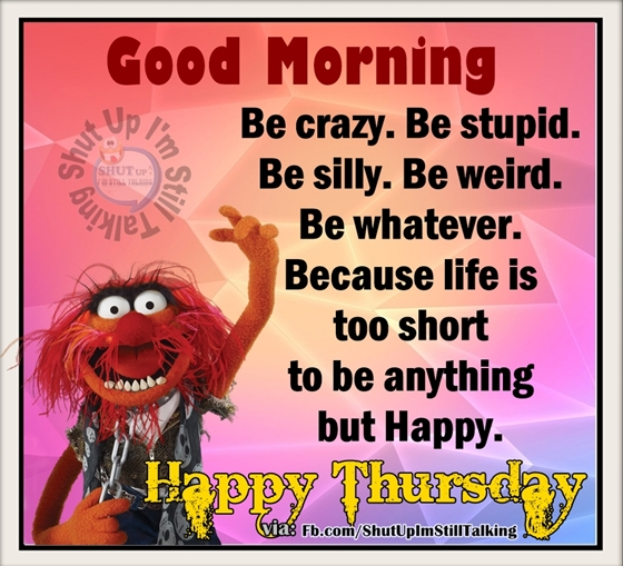Be Crazy Stupid And Silly Its Happy Thursday
