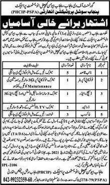 Latest Jobs in Pakistan Punjab Social Protection Authority Jobs 2021