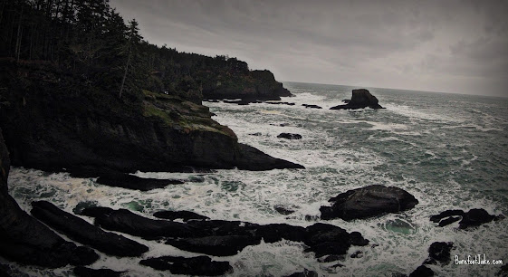 North Olympic Coast
