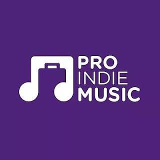NUEVAS HERRAMIENTAS PARA PROFESIONISTAS DE LA INDUSTRIA MUSICAL Y ARTISTAS INDEPENDIENTES: PRO INDIE MUSIC.