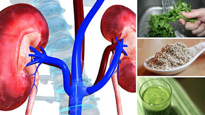 10 Herbal Remedies To Treat Kidney Pain