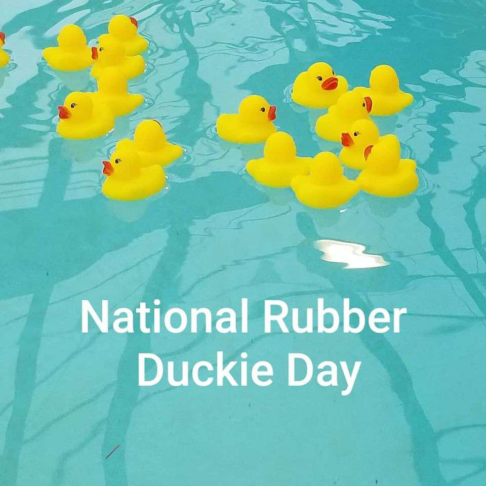 National Rubber Ducky Day Wishes Unique Image