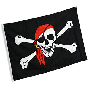 vlag met doodshoofd