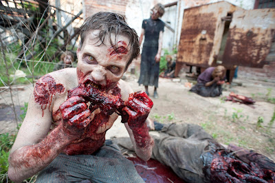 Walking Dead TV Serie - Walking Dead Staffel 2 Folge 8