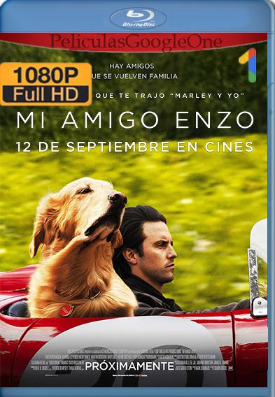 Mi Amigo Enzo [2019] [1080p BRrip] [Latino-Inglés] [GoogleDrive]