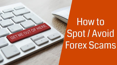 Avoid Forex Currency Trading Scams