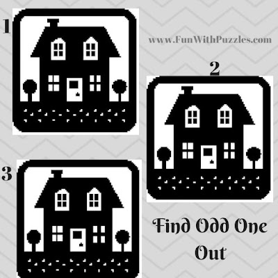 Picture Puzzle to find which hut is Odd One Out